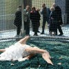 Hyperreal Angel Body Shocks Beijing Peoples